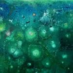 Lily Pond - Filipa Faria de CARVALHO