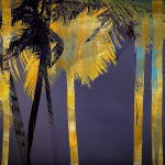 Sacred Palms by Valda Bailey, Print on Glass, hand gild, rich rose gold leaf, mmx gallery, fine art, photography, palm landscape, warm golden colours