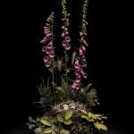 Dark Flora by Jasper Goodall, flower arrangement, Early summer foxgloves, heather, beech and bramble surround a woodland bird's nest