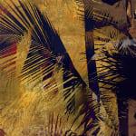 Jasper Goodall, Dark Flora #7 - Fly Agaric, 2020