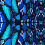Damien Hirst, Psalm: Verba mea auribus (Diamond dust)