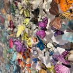 Michael Olsen, Papillon Deux Mille, 2021