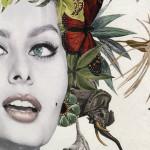 Maria Rivans, Bonbon - Sophia Loren, 2019