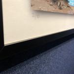 Roberta Roman, Graffiti Nude with Daffy Duck, 2019