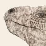 Irene Lees, Iguana