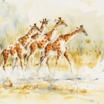 Julia Cassels, Giraffe Walk (Hungerford Gallery)