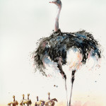 Julia Cassels, Ostrich and Chicks (Hungerford Gallery)