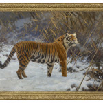 A TIGER PROWLING IN THE SNOW