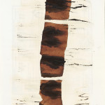 Soy Sauce Drawings 11 酱油画 11