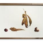 Fiona Strickland, Autumn, Torwood