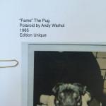 """Andy Warhol, """"Fame"""" The Pug, 1985"""