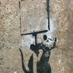 """Anarchy Rat / Peace Rat"""