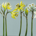 Caroline Cleave, All in a Row