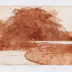 Sarah Seddon, Copper Beech