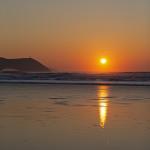 Nick Wapshott, Golden Glow, Stepper Point