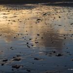 Nick Wapshott, Reflections II