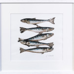 Caroline Cleave, Five Mackerel