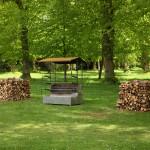 Turn-Spit (Open Fire Roasting Range)