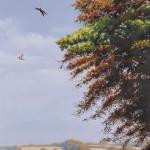 Rodger McPhail, High Pheasant