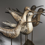 Five Shorebirds on Driftwood
