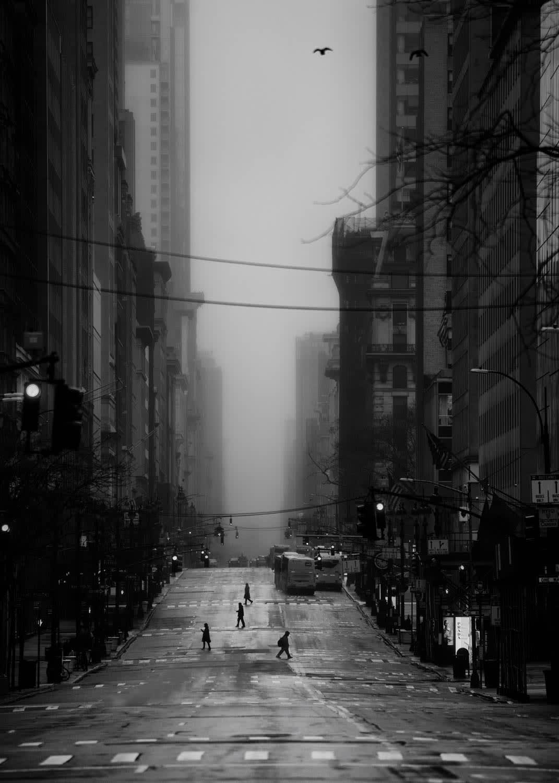 5th Avenue , New York, 2020