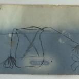 Anemone (First envelope drawing)