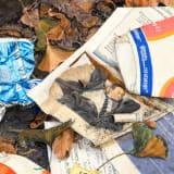 Idelle Weber Wrinkle Free, 2010 Oil on linen, 32 x 40 inches (81.3 x 101.6 cm)