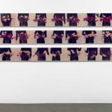 Artwork thumbnail: Bas Jan Ader, Untitled (Flower Work), 1974