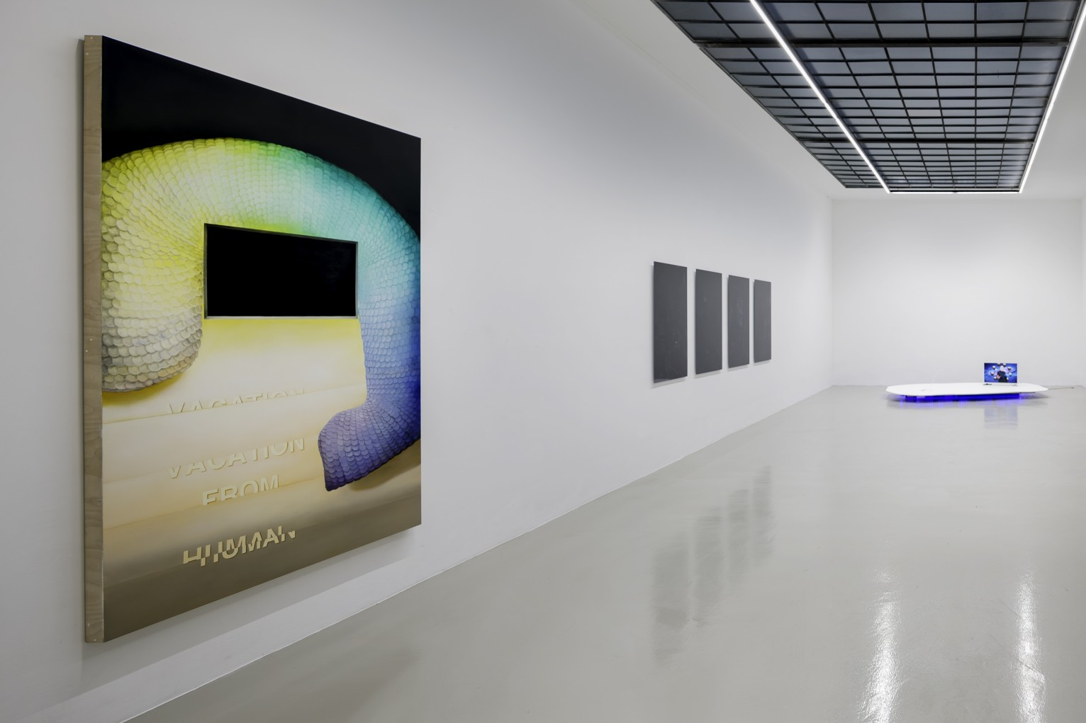 Stranger Days  curated by Jürgen Dehm  Malte Bruns | Benedikt Hipp | Lindsay Lawson | Pascual Sisto | Julia Weissenberg  16 Feb - 19 Mar 2017