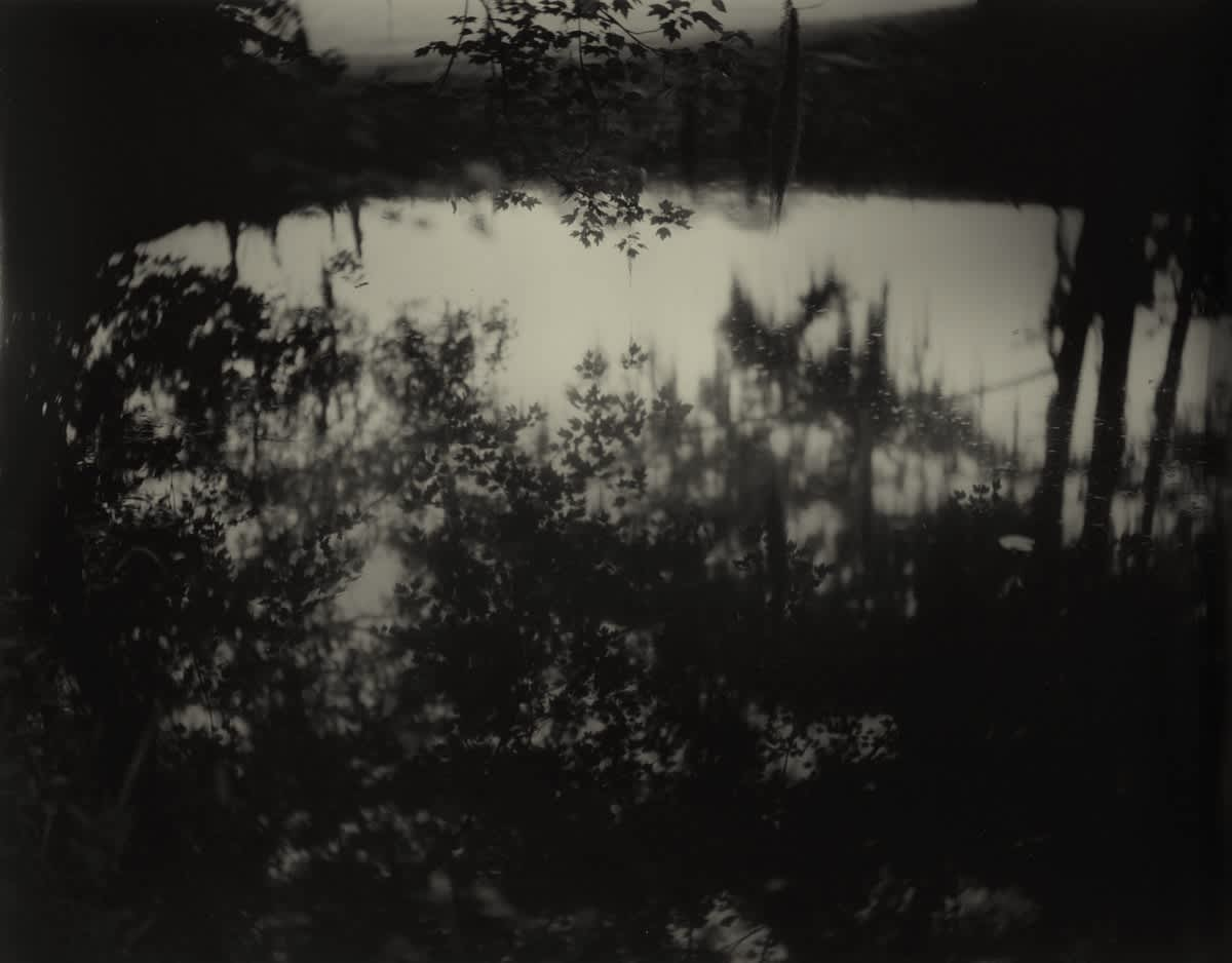 Sally Mann Proud Flesh