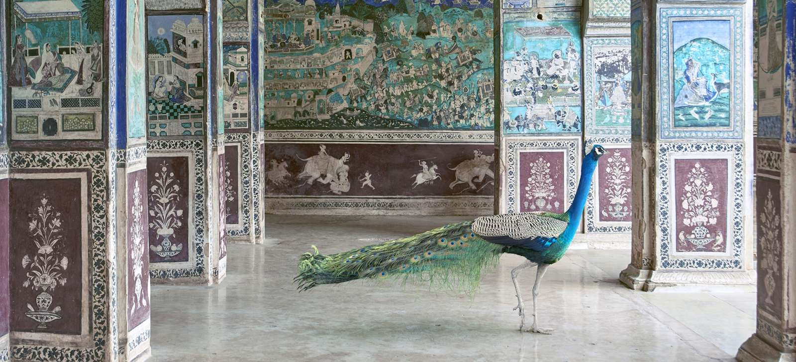 Karen Knorr India Song & Metamorphoses