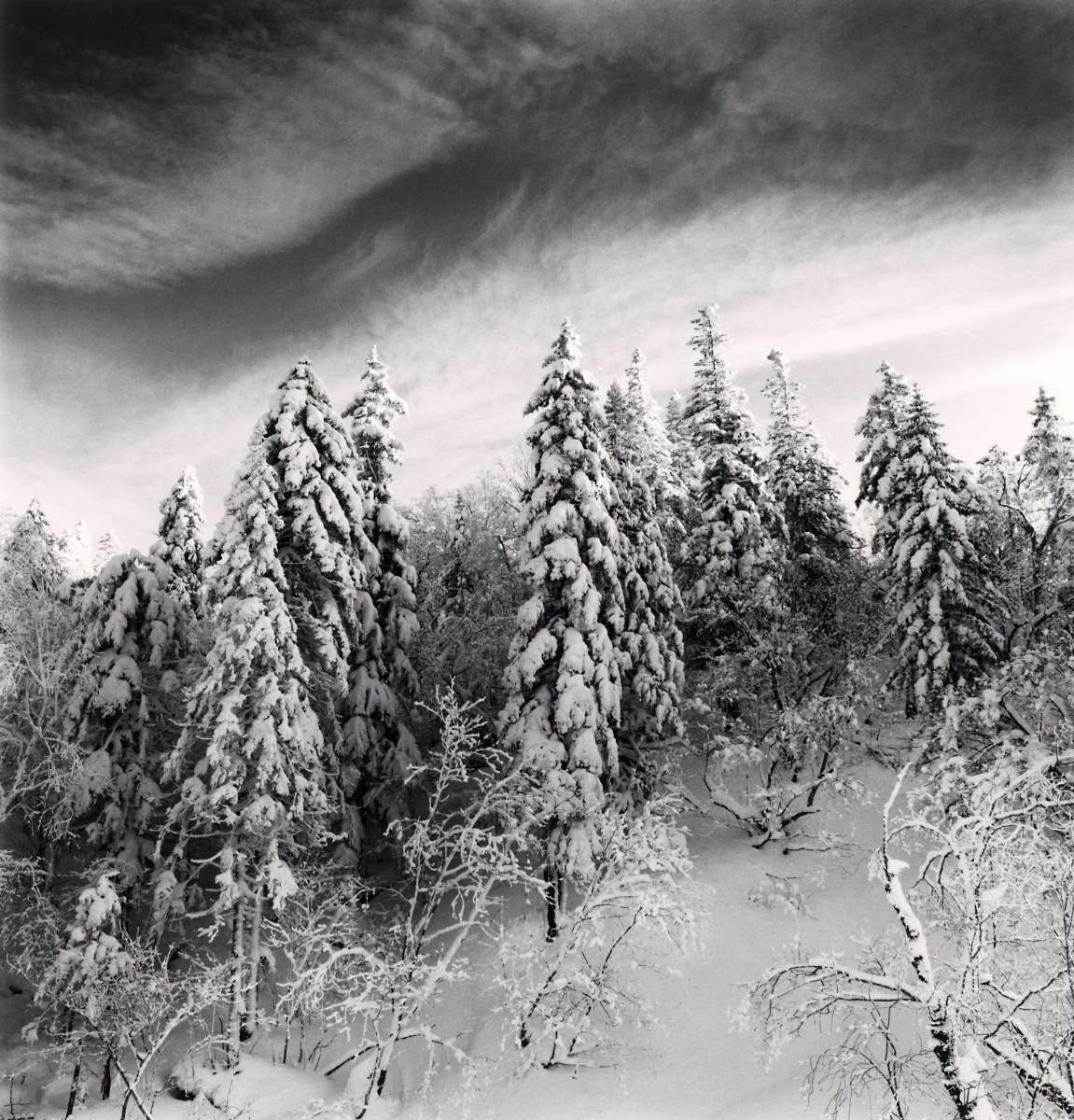 Michael Kenna Works from 2011 - 2012