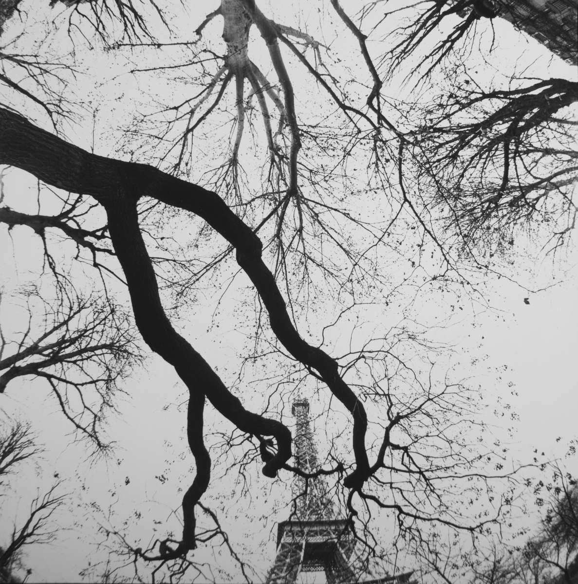Bruce Davidson  Central Park & Paris