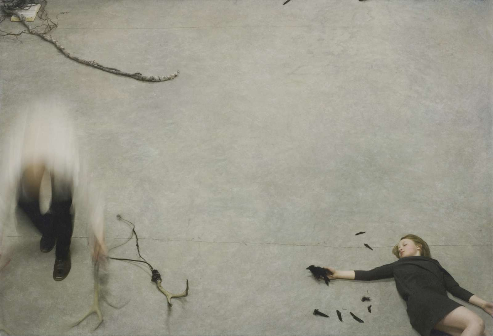 Robert & Shana Parkeharrison Selections from the Counterpoint Series