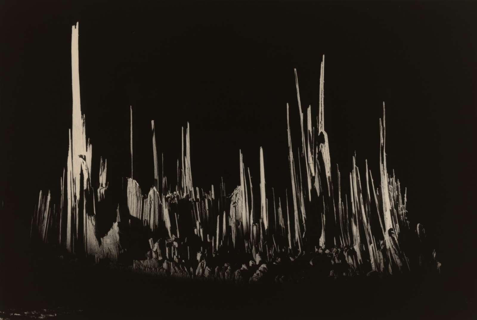 Masao Yamamoto New Work: Kawa=Flow