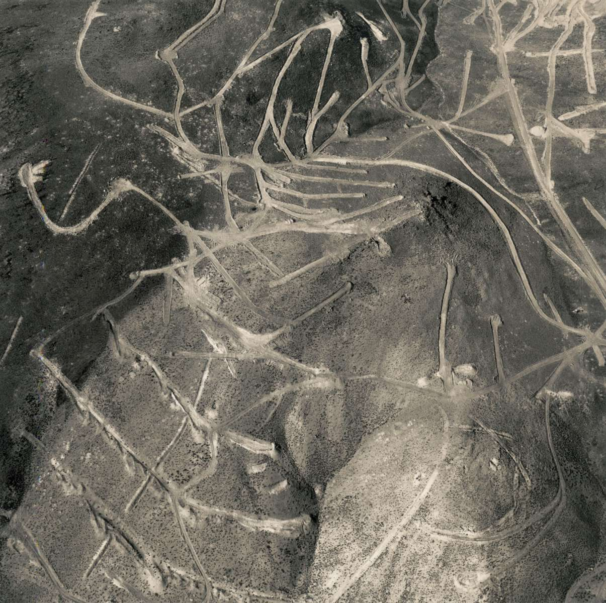 Emmet Gowin exhibition featured on Le Journal de la Photographie