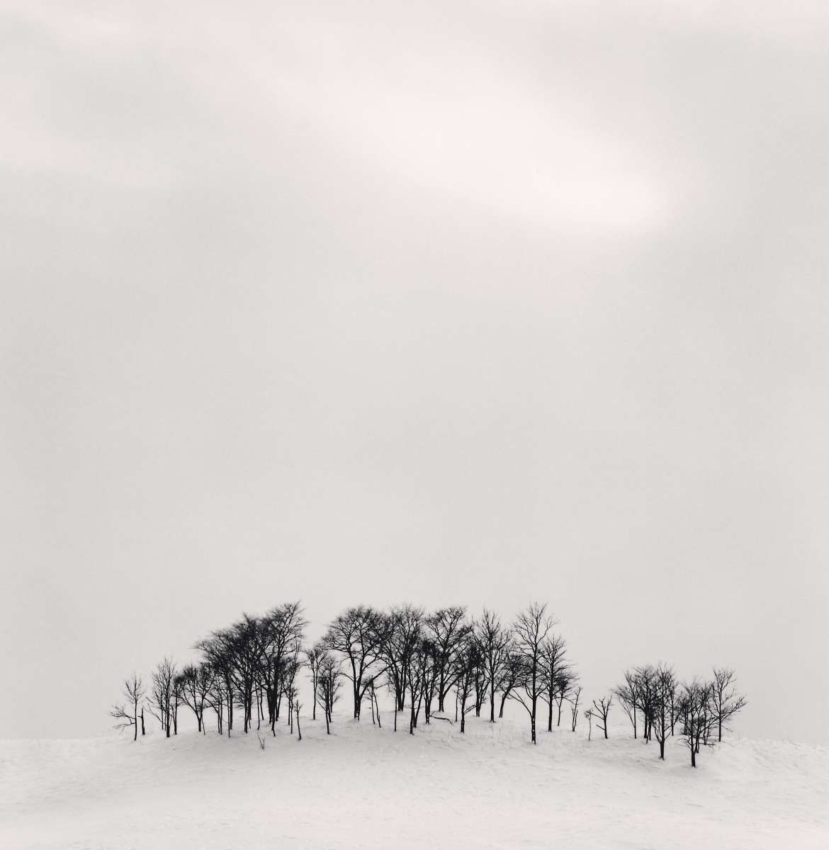 Michael Kenna Retrospective at the Moscow Museum of Modern Art