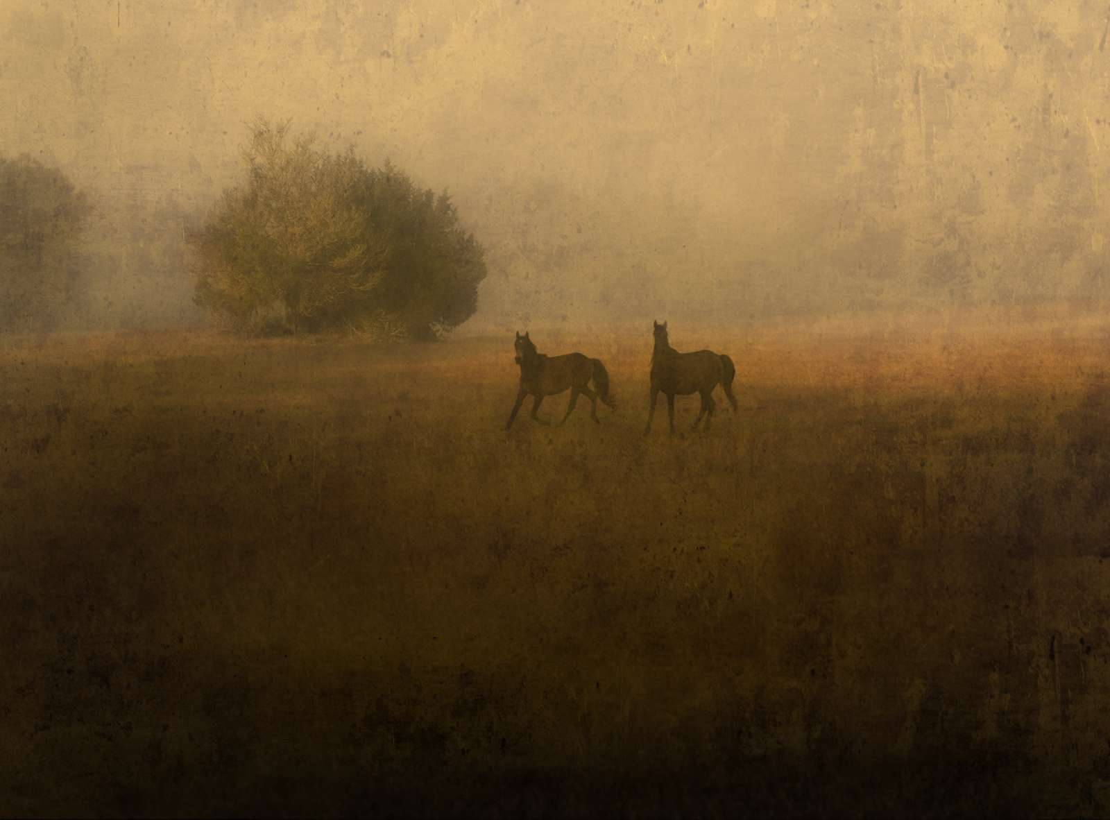 Jack Spencer: This Land Lenscratch: Fine Art Photography Daily