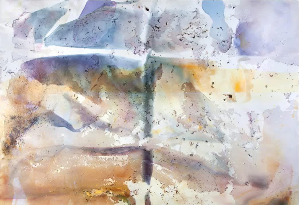 Matthew Brandt:  The Serial Artist