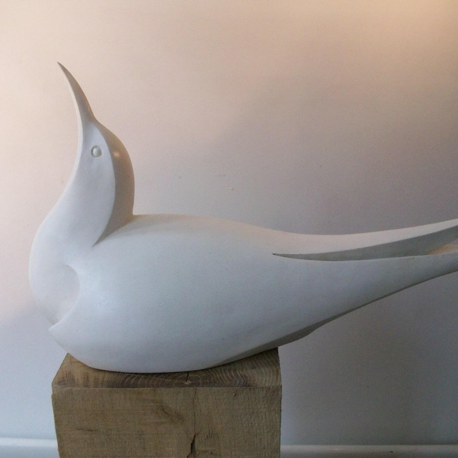 Paul Harvey, Tern, 2019