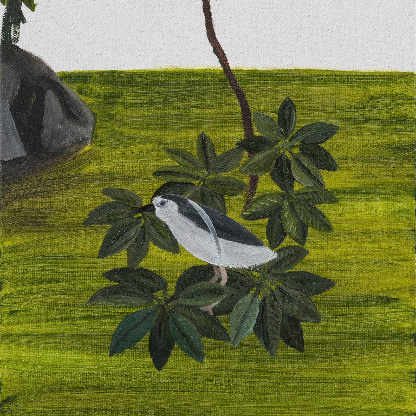 Huang Hai-Hsin 黄海欣, Daan Bird 1, 2020