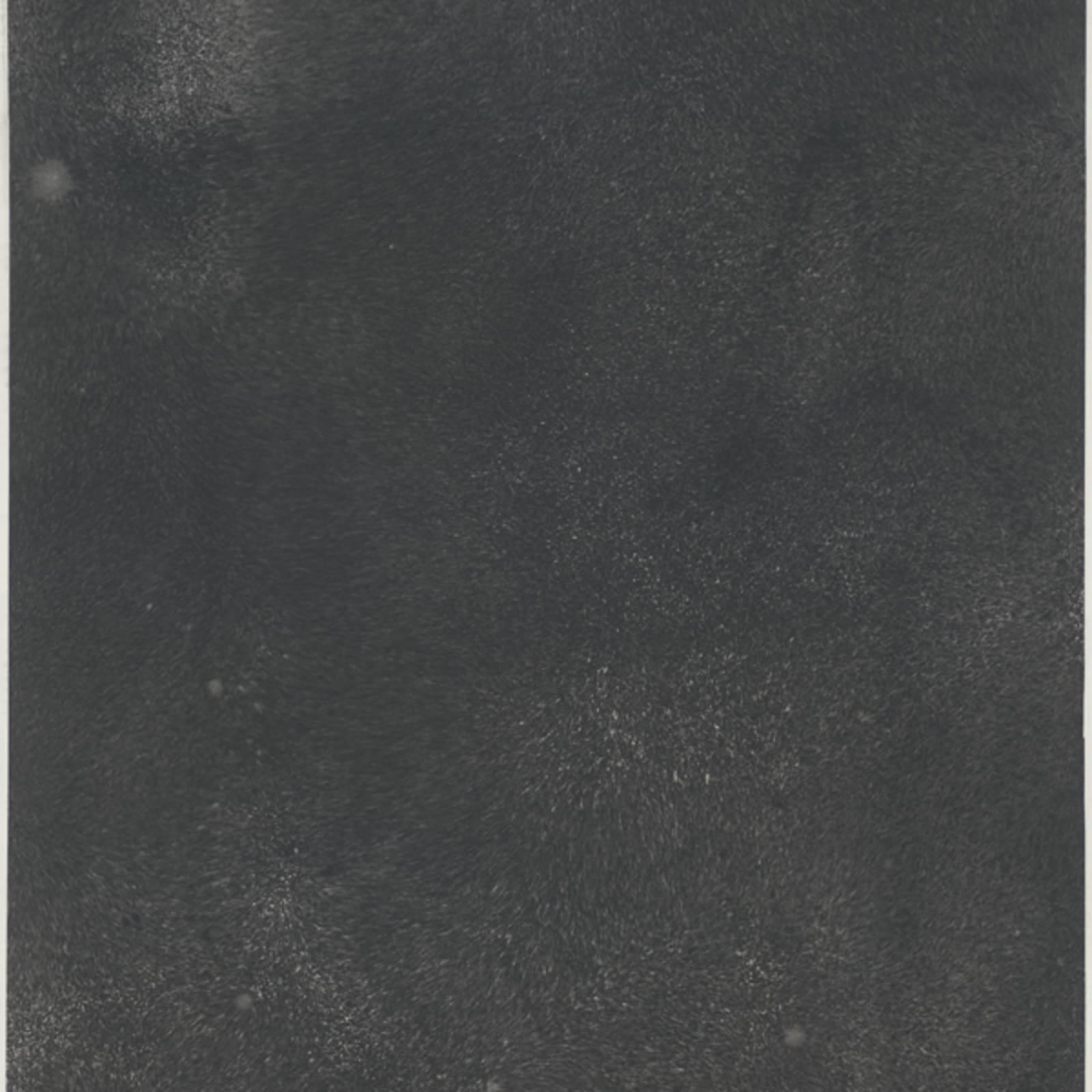 Bingyi 冰逸, Quantum: Infinity 量子波相:无限, 2018