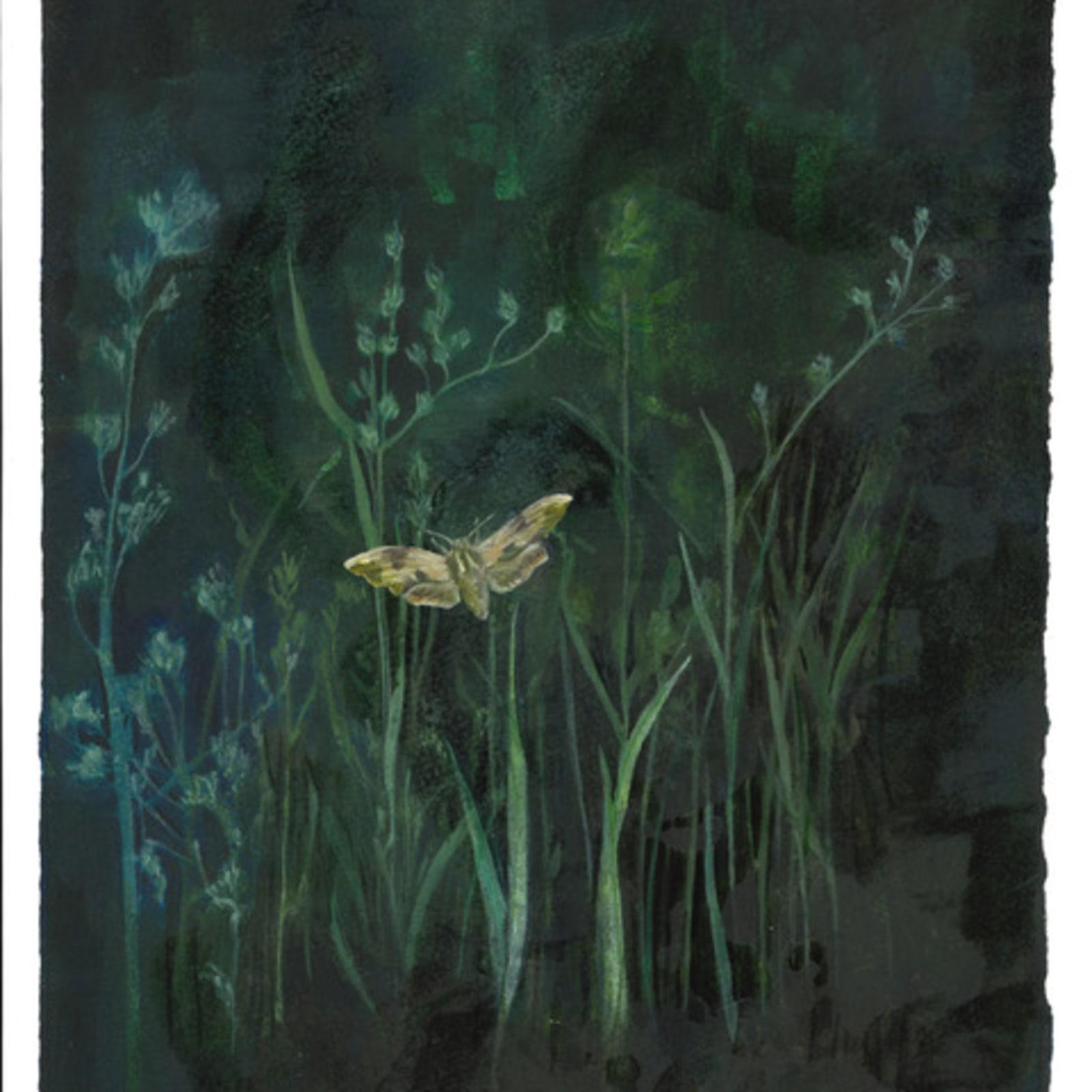 Melanie Miller, Night Garden I, 2020