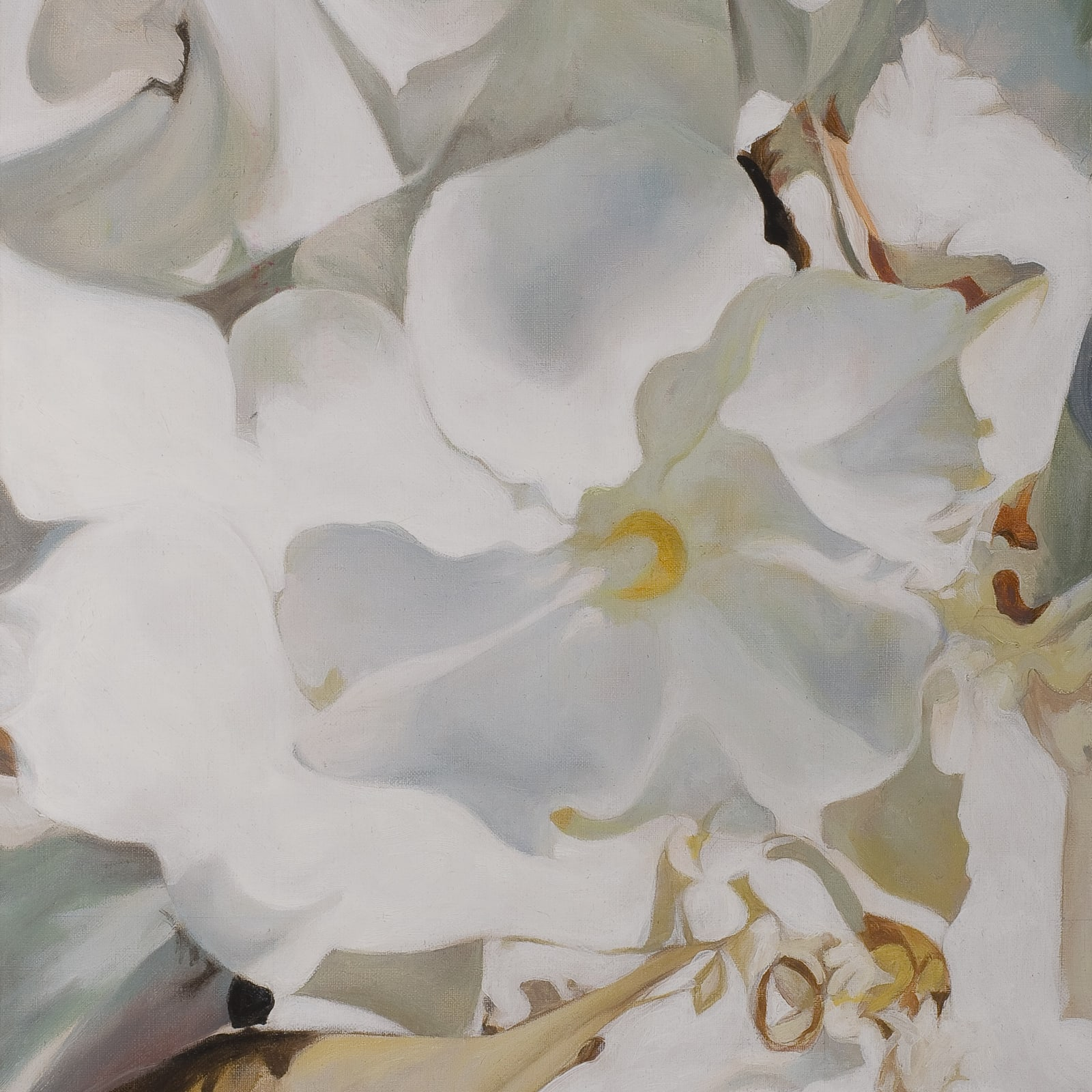 Orsina Sforza  Oleander, 2006  oil on canvas  40 x 30 cm
