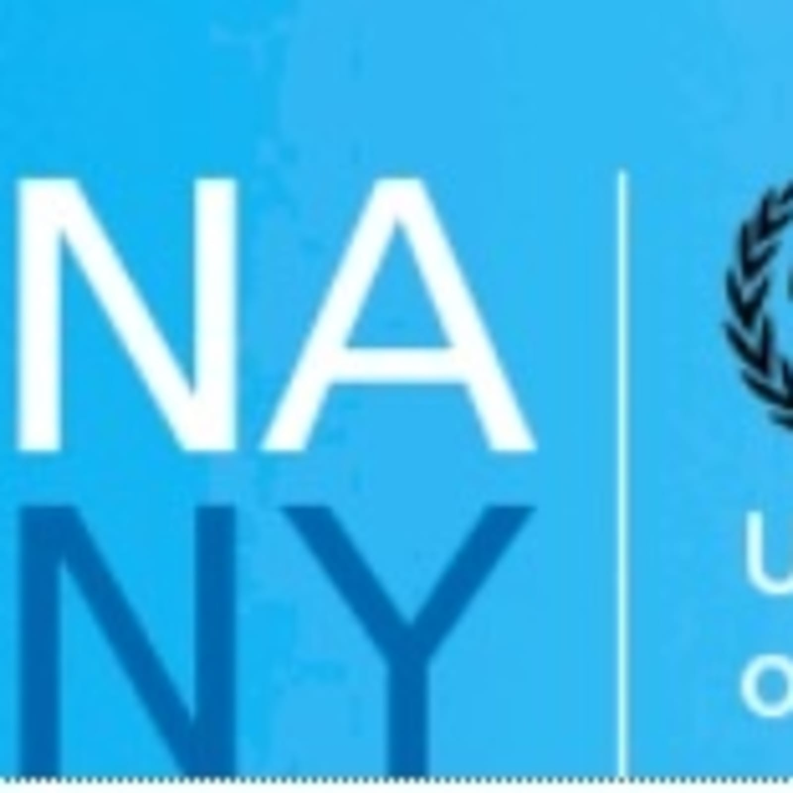 United Nations Association of New York lecture with artist Cornelia Thomsen