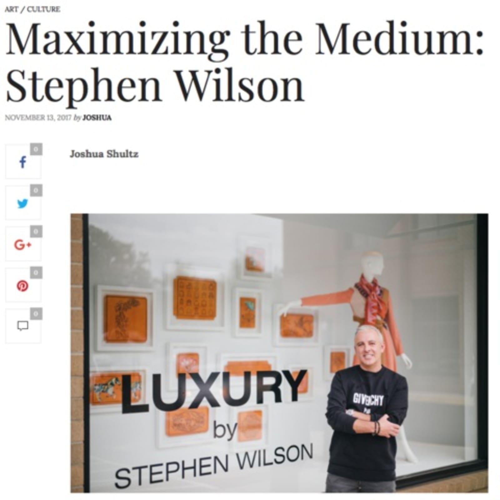 Maximizing the Medium: Stephen Wilson