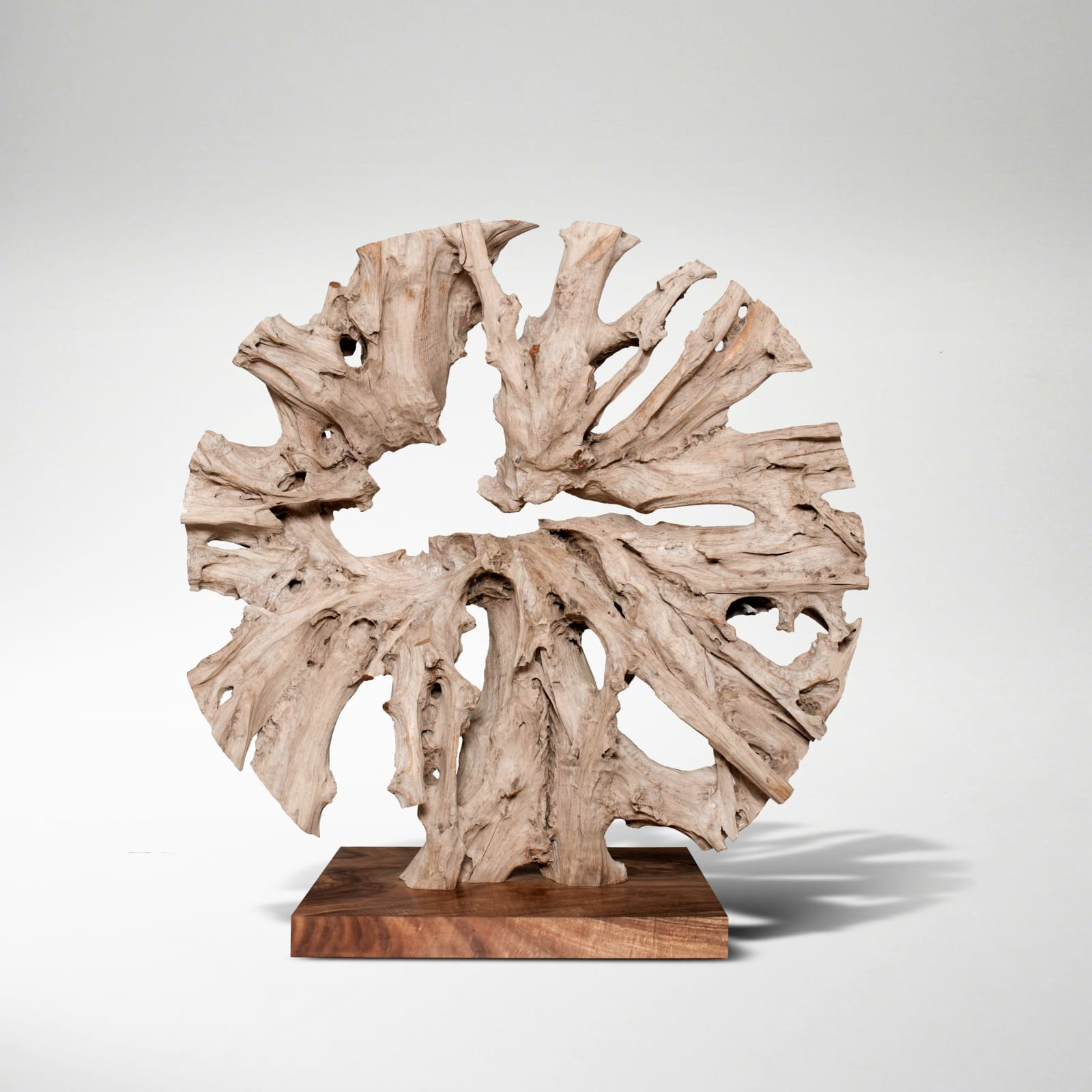 Monumental Circular Sculpture, 2018  Signed JAS  Teak root on separate plinth