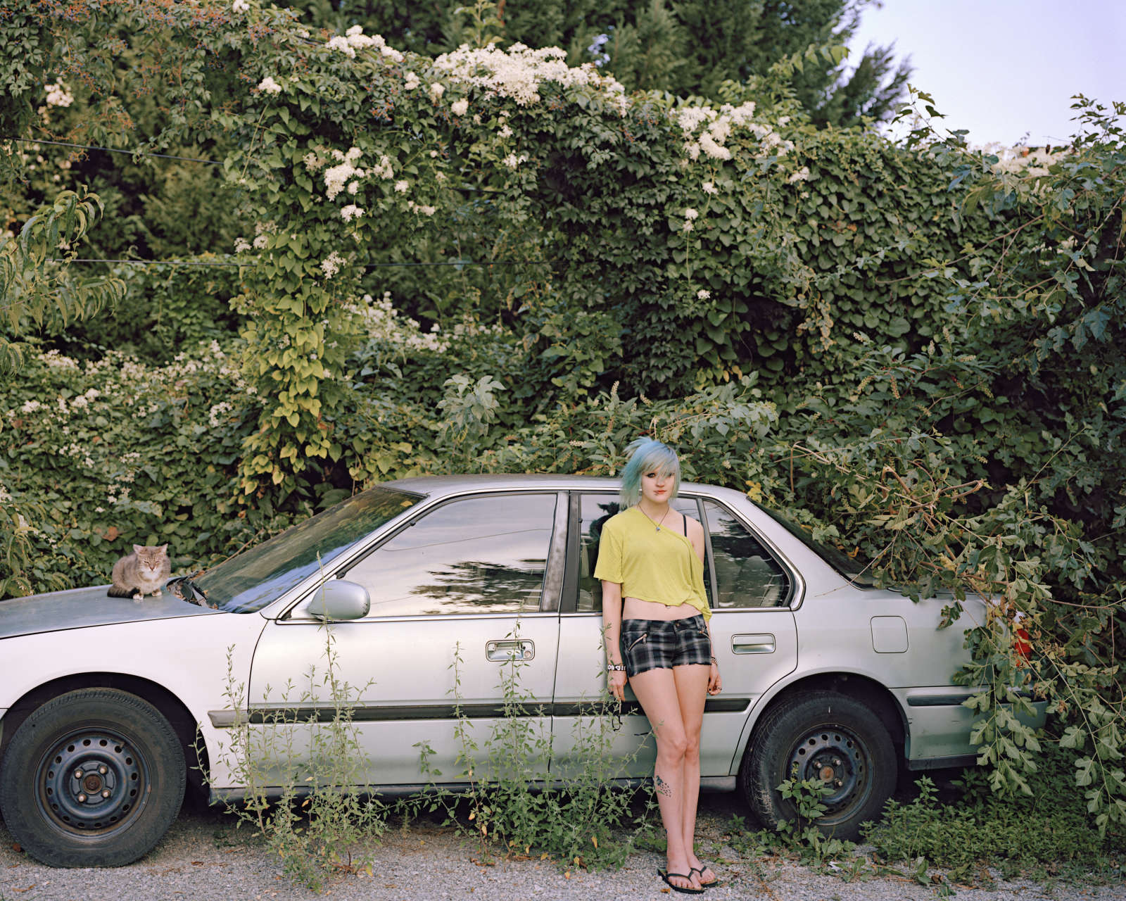Girl with Cat, VA, 2012