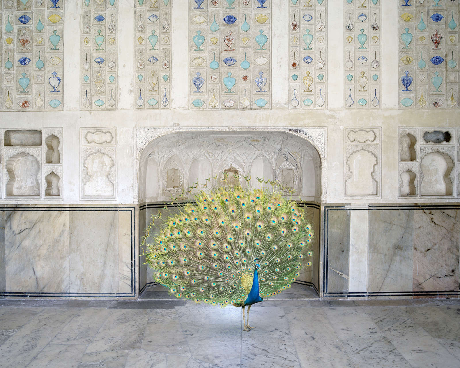 Master of Seduction, Amer Fort, Amer, 2017