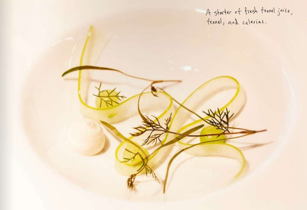 Fennel and Celeriac at Geranium, 2011